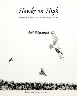 Hawks on High Book Cover by Penny Perry