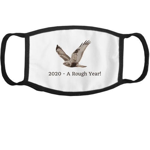 2020 A Rough Year Mask