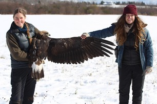 Abbie and Hannah Golden Eagle Oct 2020 by A Witchger 2