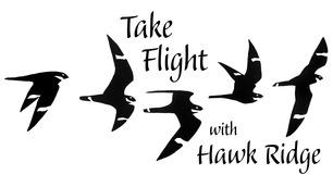 Take Flight Logo Karl Bardon